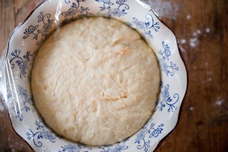 a bowl of risen dough