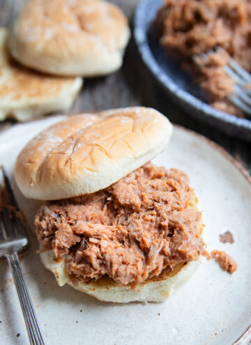 a plate of bbq pulled pork on a bun