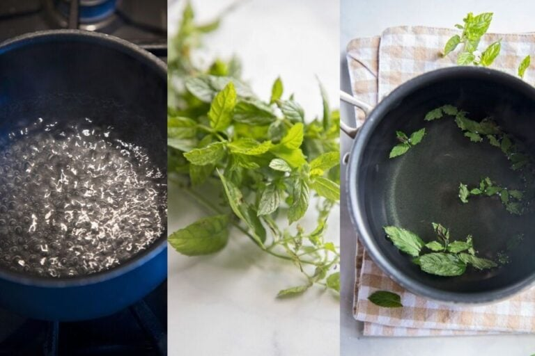 images of the steps for making peppermint tea. boil water, add leaves and steep.