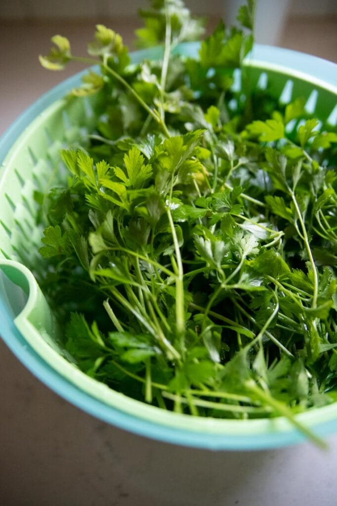 a salad spinner basket with parsley in it