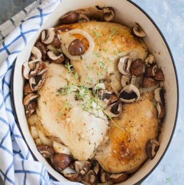 a pot of chicken and mushrooms in an oval dutch oven